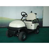 Quality 1 seat Mini electric Golf cart for sale