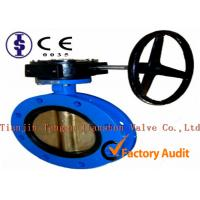 Quality API Double Flanged U Type Butterfly Valve / Electric Stainless Steel Butterfly Valves for sale