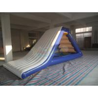 Quality Inflatable  Freefall Water Slide for sale