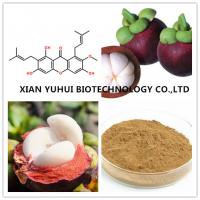 Quality mangosteen rind powder,mangosteen skin extract,mangosteen peel extract for sale