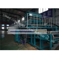 Quality High Automation Waste Paper Egg Crate Making Machine For Farm Easily Learned for sale