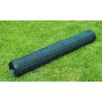 Quality PVC coated Green color Hexagonal Chicken Wire Net for sale