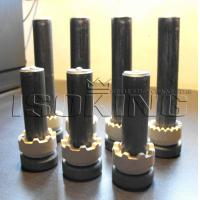 Quality Wholesale M19*100, M19*120 Nelson Shear Stud with CE for prefabricated steel building for sale