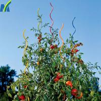 Quality Durable and Robust Tomato Growing Spiral Stake Plant Growing Support Wire for sale