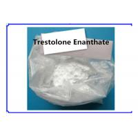 Quality Trestolone Enanthate Muscle Building Strong Effects USP Standard 99% Assay for sale
