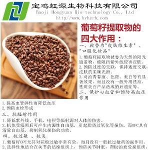 Grape Seed Extract Vitis Vinifera