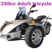 Best 250CC Trike Motorcycle wholesale