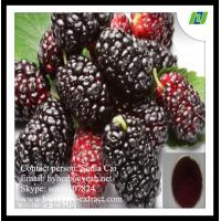 Mulberry Fruit Extract anthocyanins 20%