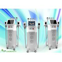 China FDA approval 10.4 inch touch color screen fat freezing cryolipolysis cryolipolysis cold body sculpting machine for salon on sale
