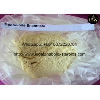 China Injection Steroid YellowTrenbolone Powder , Trenbolone Enanthate CAS 10161-33-8 on sale