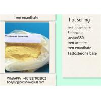 Quality CAS 10161-34-9 Tren Anabolic Trenbolone Enanthate C25H34O3 For Weight Loss for sale