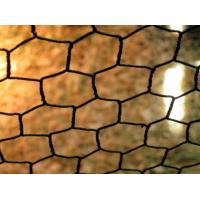 Quality Garden pvc coated Hexagonal Netting Fence With Stainless Steel PVC Coated for sale