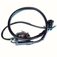 China Stable Performance Motorcycle Electrical Accessories , DY100 12V Motorcycle Ignition Coil on sale