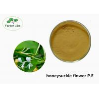 Quality Food Grade Honeysuckle Flower Extract P.E. With ISO Certificated for sale