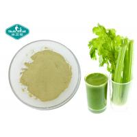 Quality Anti - Inflammatory Dried Celery Powder / Super Green Powder For Weight Loss for sale