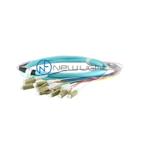 Quality SC/PC 0.9mm 12core Om3 Om4 Fiber Optic Patch Cord for sale