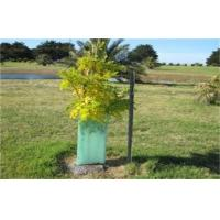 Best Light Green Corrugated Plastic Tree Guards UV Resistant For Protection Green wholesale