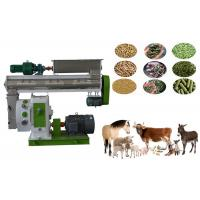 Quality 304 SS Feed Pellet Production Machine High Strength Precision Gear Drive for sale