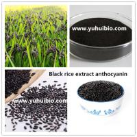 Quality black rice extract cyanidin-3-glucosides,black rice extract C3G powder,black rice Proanthocyanidins for sale