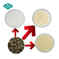 Quality Sweetener Mogrosides 80% Monk Fruit Extract Powder in Milk White Powder of Herbal Extract/Plant Extract for sale