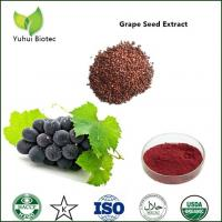 Quality grape seed extract polyphenols,grape seed extract 95%,grape seeds extract proanthocyanidin for sale