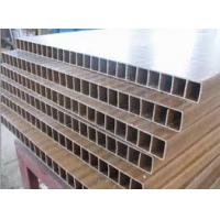 China Indoor Recycled WPC Board Production Line , PVC WPC Hollow Door Board Extruder on sale