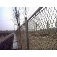 Buy Low Carbon Steel Wire With PVC Coated Chain Link Fence Mesh 13 at wholesale prices