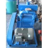 Quality 2BE1 Native Paper Water Vacuum Pump for sale