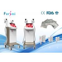 factory offer two handle together luxury 15 inch screen zeltiq cryolipolysis machine price