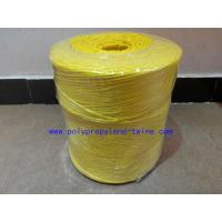 China 22500D Colorful Twisted Banana Hay Baling Twine Polypropylene String Free Sample on sale