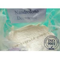 Best Nandrolone Decanoate Steroid Powder wholesale