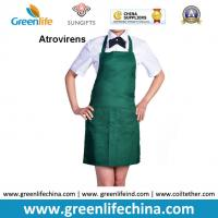 Quality Atrovirens dark green fashion color advertising cheap good apron with 2pcs front pockets for sale