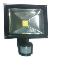 Quality High powered Pure White 50W Indoor Led Flood Lights Lamp 60° for playground, factory for sale