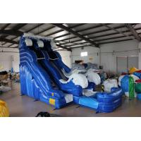 Quality Dolphin Inflatable Water Slide For kids for sale