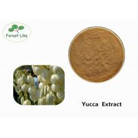 Buy Odor Removing Pure Yucca Extract Powder 30% Sarsaponin Yellow Brown Powder at wholesale prices