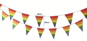 Quality Indoor Triangle 20cmx30cm Decoration Flag Line for sale