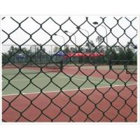 Quality PVC Coated Low Carbon Steel Wire Chain Link Fence Mesh for sale