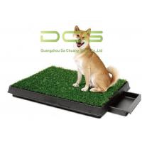 Quality UV Resistant PE Non - Infill Turf Artificial Grass For Pets Indoor And Outdoor for sale