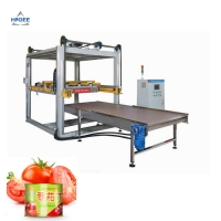 Quality Factory empty tin can palletizer stacking machine food can palletizing machine pallet machine for sale