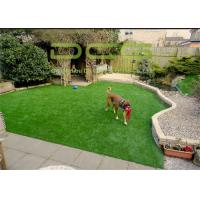 Quality 10500 Dtex Commercial Artificial Putting Green Turf 9800 Dtex Easy Care for sale