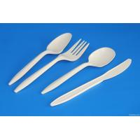 Quality PLA plastic spoon,biodegradable plastic ice cream spoon for sale