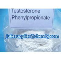 Injectable Testosterone Phenylpropionate Steroid Hormones Powder For Muscle