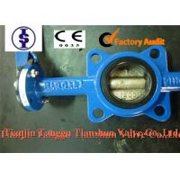 Quality ANSI Actuated Cast Iron Butterfly Valve with PTFE , Nylon , Lubricated Bronze Bushing for sale
