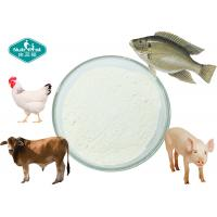 Quality Collagen Powder ex Bovine , Porcine , Chicken , Fish with 90% Protein for sale