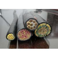 China Copper core PVC insulated and PVC sheathed control cable on sale