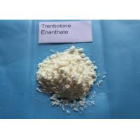 Quality Trenbolone Enanthate Powder / Tren E For Muscle Gaining CAS 10161-33-8 for sale