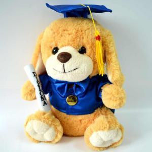 Cute Plush Toys for baby, Graduation Present, Graduation Dog Plush.