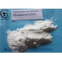 Quality 58-22-0 Testosterone Steroid Hormone Sustanon 250  Testosterone blend powder SUS 250 99% purity for sale
