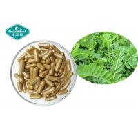 Quality Herbal Supplements Astragalus Root 300mg Capsules for Immune System Support for sale