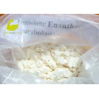 Testosterone Enanthate supplier White Crystalline Muscle Building Steroid